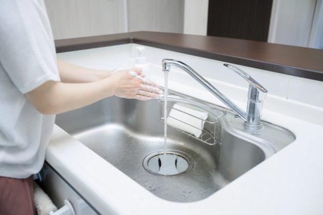 食器洗い スポンジ