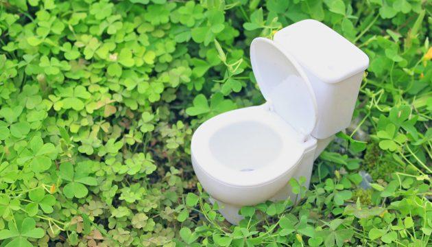 トイレ掃除でキッチンハイターを使うと汚れは落ちる?