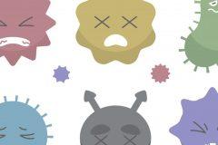 エアコンに潜むカビが病気の原因?汚れた内部の効果的な掃除方法